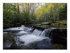 Autumn in the Smokys (John Cothron) Tags: 15mm americansouth blountcounty cpl canoneos5dmkiv carlzeiss cothronphotography distagon1528ze dixie eastsouthcentralstates georgiaphotographer greatsmokymountainnationalpark johncothron lynncampprong lynncampprongcascades middlepronglittleriver middleprongtrail southernregion tennessee thesouth townsend tremont us usa usaphotography unitedstatesofamerica volunteerstate zeissdistagont2815mmze autumn bw blackandwhite circularpolarizingfilter clouds cloudyweather creek fall falling flowing forest freshwater hiking landscape longexposure monochrome morninglight nature outdoor outside river scenic stream water waterfall img21563171025coweb6132018 ©johncothron2017 autumninthesmokys
