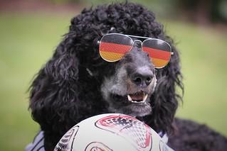 Toni bereitet sich auf die WM vor....