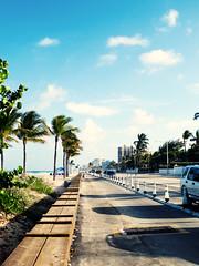 north ocean blvd, fort lauderdale (brickgrouse) Tags: florida pointandshoot sunshine ocean fortlauderdale palmtrees northoceanblvd