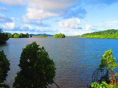IMG_7304 (stevefenech) Tags: south pacific islands travel adventure stephen steve fenech fennock micronesia pohnpei kolonia