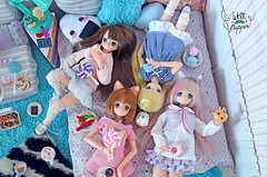 17 (Welt Der Puppen) Tags: azone pureneemo pullip pullips doll dolls collector hobby 16