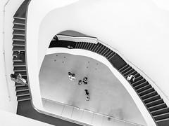 #Taiwan #Taichung #Black #White #BW #Structure #台灣 #台中 #國家歌劇院 #黑白 (jacky871202) Tags: taiwan taichung black white bw structure 台灣 台中 國家歌劇院 黑白