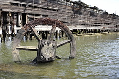 Last Steel Wheel (95wombat) Tags: abandoned decayed rotted submerged filthy forgotten slimy corroded rusty killvankull newyork shootersisland