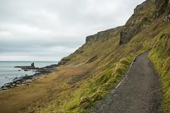 18MAR15 SLYNNLEE-7541 (Suni Lynn Lee) Tags: giantscauseway giants causeway northern ireland ni landscape scenic rocky beach volcanic