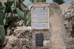 FMG_1138 (Marco Gualtieri) Tags: israele palestina galilea giudea terrasanta pellegrinaggio marcone1960 nikond850 d850 tabor