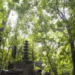 Stone Pagoda thumbnail