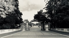 Sather Gate--cropped (Melinda Stuart) Tags: gate uc university plaza sathergate entrance entry campus