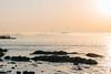 DSC_4274.jpg (八戸ノ本室) Tags: 青森県 種差海岸 蕪島 八戸市