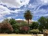Just beautiful! (Song Catcher) Tags: spain park outdoor garden outdoorgarden seville