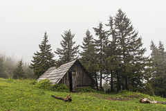 Hidden place (mystero233) Tags: cottage tourist hiking mountains fog evening scary slovakia slovensko velkafatra fatra krizna grass green flowers windy landscape outdoor