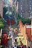 Bueren en Fleurs (Liège 2018) (LiveFromLiege) Tags: liège luik wallonie belgique architecture liege lüttich liegi lieja belgium europe city visitezliège visitliege urban belgien belgie belgio リエージュ льеж buerenenfleurs2018 buerenenfleurs bueren en fleurs montagnedebueren montagne de liege1418 1418 wwi ww1 fleur flowers flower stairs escalier escaliers coteauxdelacitadelle coteaux la citadelle