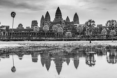 Angkor Wat Reflected (Jill Clardy) Tags: angorwat asia cambodia siemreap bw buddhist buddhism religion architecture ancient angkor wat temple water pond moat reflected reflection palm trees explore explored