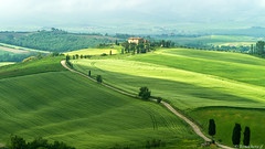val d'Orcia-018 (bonacherajf) Tags: italia italie valdorcia podere terrapille gladiator cyprés cypress tuscany toscane