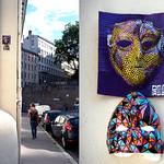 Wall installation by Prolo [Lyon, France] thumbnail