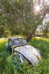 Swamped (JoshyWindsor) Tags: sunburst abandoned longgrass paxos agnitravel canoneos5dmarkiii rustingcar europe canonef1635mmf28l greece car automobile ionianislands mini