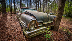 Remaining Solutions (Wayne Stadler Photography) Tags: georgia preserved retro abandoned classic rustography automotive overgrown vehiclesrust rusty junkyard vintage oldcarcity rustographer derelict white premiere lincoln 1957