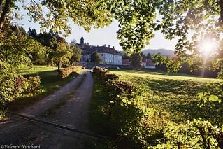 SF_La Part-dieu 14 - The old Convent (Chartreuse) of la Part-Dieu, near Bulle - Gruyère region, Switzerland