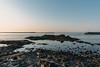 DSC_4272.jpg (八戸ノ本室) Tags: 青森県 種差海岸 蕪島 八戸市