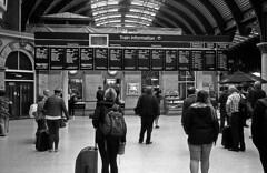 Information (Gabo Barreto) Tags: york station railway train film olympus trip35 blackandwhite analoguephotography 35mm kosmofotomono iso100 filmisnotdead ishootfilm selfdeveloped scannedfromfilm filmcamera 135