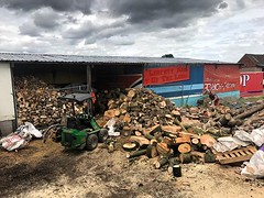 "Long overdue day at the yard processing logs and servicing the stump grinder ! Great day with @wardensfencinglandscapes and @danny_weston #wardenstreecare <a style=""margin-left:10px; font-size:0.8em;"" href=""http://www.flickr.com/photos/137723818@N08/27950123587/"" target=""_blank"">@flickr</a>"