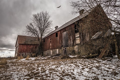 Crow's Den (SNAPShots by Patrick J. Whitfield) Tags: creepy abandoned lines detail texture patterns dof colour old barn bird atmosphere light shadows clouds outside landscape broken natrure cloudscapes