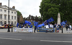 Img634631nxi_conv (veryamateurish) Tags: london westminster parliament housesofparliament abingdonstreet demonstration protest eu europeanunion brexit flags