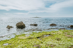 Rock covered in green algae (wuestenigel) Tags: porec rock sea coast croatia algae travel seaside water wasser landscape landschaft reise meer seashore strand ocean ozean beach noperson keineperson nature natur sky himmel outdoors drausen summer sommer scenic szenisch lake see reflection betrachtung island insel fairweather schöneswetter seaweed seetang daylight tageslicht