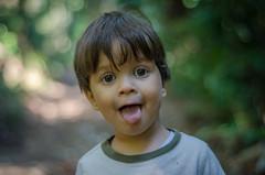 Diego (mcvmjr1971) Tags: trilhandocomdidi 2018 50mmf18d brasil cantagalo d7000 diego outono pedradocantagalo beleza bordercollie cachorro dog mmoraes morrodocantagalo nikon niterói pendotiba riodejaneiro trilha