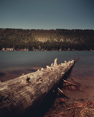 A view of a mountain by Donner Lake with a fallen tree on the foreground. (pedferr) Tags: sunny color nature reflection lake hill red blurry morning summer tree diagonal dramatic wood lines pattern landscape shapes outdoors vertical woods water orange usa unitedstatesofamerica travel bluesky longexposure 4x5 colorful warm sky river forest house brown trails california adventure mountain detail