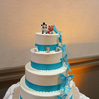 Real wedding photo -- cute animals custom wedding cake topper, wedding cake design ideas