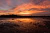 (CarolienCadoni..) Tags: ngc sony sonyilcaa99m2 sal2470z red sundown sunset light sun drenthe netherlands whereilive puddle puddlereflection reflection