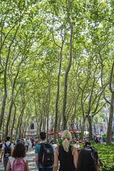 Bryant Park (Sheeyam Shellvacumar) Tags: newyork nyc photography streetphotography nikon d3200 nikonphotography newyorkcity cityscapes travel travelusa travelphotography usa bryantpark