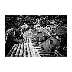 dubrovnik (s_inagaki) Tags: monochrome walking bnw street モノクロ oldlens 白黒 bw 散歩 vintagelens blackandwhite dubrovnik スナップ croatia ドゥブロヴニク オールドレンズ クロアチア snap industar69 屋根 roof
