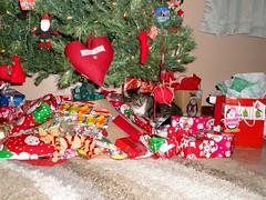 2013 Christmas Tree with Stabbur (Stabbur's Master) Tags: christmas christmasdecorations christmasgifts christmastree christmaspresents 2013christmas cats kitty kitten