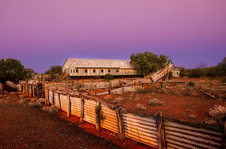 Sunrise at Currawinya Shearing Shed