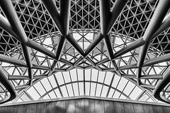 XXXX (tan.ja1212) Tags: schwarzweis blackandwhite architektur architecture bahnhof trainstation london linien lines dachkonstruktion kurven kingscross dach roof