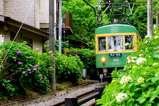 Enoshima Electric Railway 300 Type Train at the Goryo-jinja Shrine ; 江ノ島電鉄300形電車(鎌倉御霊神社)