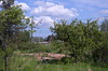 IMGP9370 (kudrdima) Tags: сторожевойдом россия russia oldtime петербурговаршавскаяжелезнаядорога №32 кирпич brick руины disassembly