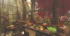 The Feast.... (kellytopaz) Tags: food feast dining greenhouse sunlight trees rustic