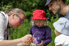 Edinburgh Botanic Gardens BioBlitz 2018 -35 (Philip Gillespie) Tags: • edinburgh royal botanic gardens 2018 big bioblitz bio blitz kids children men women man woman people fun faces smiles water wet insects bugs moths spiders legs arms eyes hats grass trees bushes plants short pool sun sky pond lilly wings park nature colour green blue red yellow orange purple science teach record check house cottage photo photography canon 5dsr rbgenature thebotanics dipping worms birds bigbotanicsbioblitz