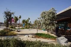 2018-06-FL-191350 (acme london) Tags: 2018 beach dubai lamer landscape meraas restaurant uae