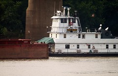 Patsy Coleman Towboat on the Ohio River (hazelwood41) Tags: barge ohioriver owensboro kentucky