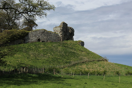 Ruins of Skelbo Castle