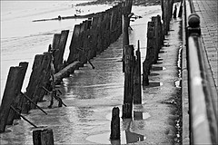 Buried in  Mud Monochrome (brianarchie65) Tags: riverhumber siemens thedeep victoriadockestate mud trash rubbish lapollution wetreflections reflectiononwater reflections posts railings fences monochrome blackandwhite blackandwhitephotos blackandwhitephoto blackandwhitephotography blackwhite123 unlimitedphotos flickrunofficial flickruk flickr flickrcentral ukflickr ngc