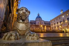 Palermo - Piazza Pretoria (1554 AD) (bautisterias) Tags: palermo sicily sicilia southernitaly italy unesco arabnormanpalermo night longexposure dawn baroque barocco