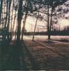 "Long Shadows (dreamscapesxx) Tags: instant polaroid ""polaroidslr680"" ""polaroidoriginals600film"" sunlightandshadows bytheriver intheyard dawn fog barrytonmi polavoid snapitseeit"