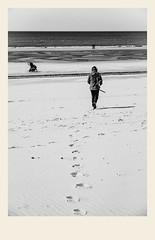 Suivre son chemin (Napafloma-Photographe) Tags: 2018 architecturebatimentsmonuments bandw bw france hautsdefrance landscape letouquet pasdecalais paysages personnes techniquephoto blackandwhite boutique monochrome napaflomaphotographe noiretblanc noiretblancfrance photoderue photographe plage province sable streetphoto streetphotography traces beach