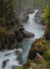 Silver Falls, Mt Rainier NP. WA (Sveta Imnadze) Tags: nature landscape waterfalls mtrainiernp wa silverfalls trail outdoors