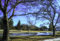 Upper Green in Winter (Rusty Russ) Tags: newbury ma massachusetts upper green egret ice pond tree snow winter colorful day digital graffiti window flickr country bright happy colour eos scenic america world sunset beach water sky red nature blue white art light sun cloud park landscape summer city yellow people old new photoshop google bing yahoo stumbleupon getty national geographic creative composite manipulation hue pinterest blog twitter comons wiki pixel artistic topaz filter on1 tinder