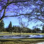 Upper Green in Winter thumbnail